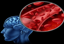 Great Ways to Stimulate Blood Flow from the Brain