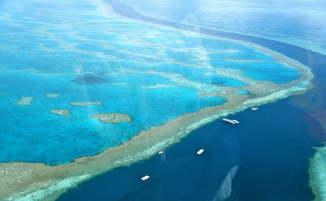 Amazing_Great_Barrier_Reef