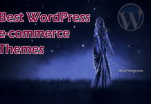 Best WordPress Ecommerce Themes