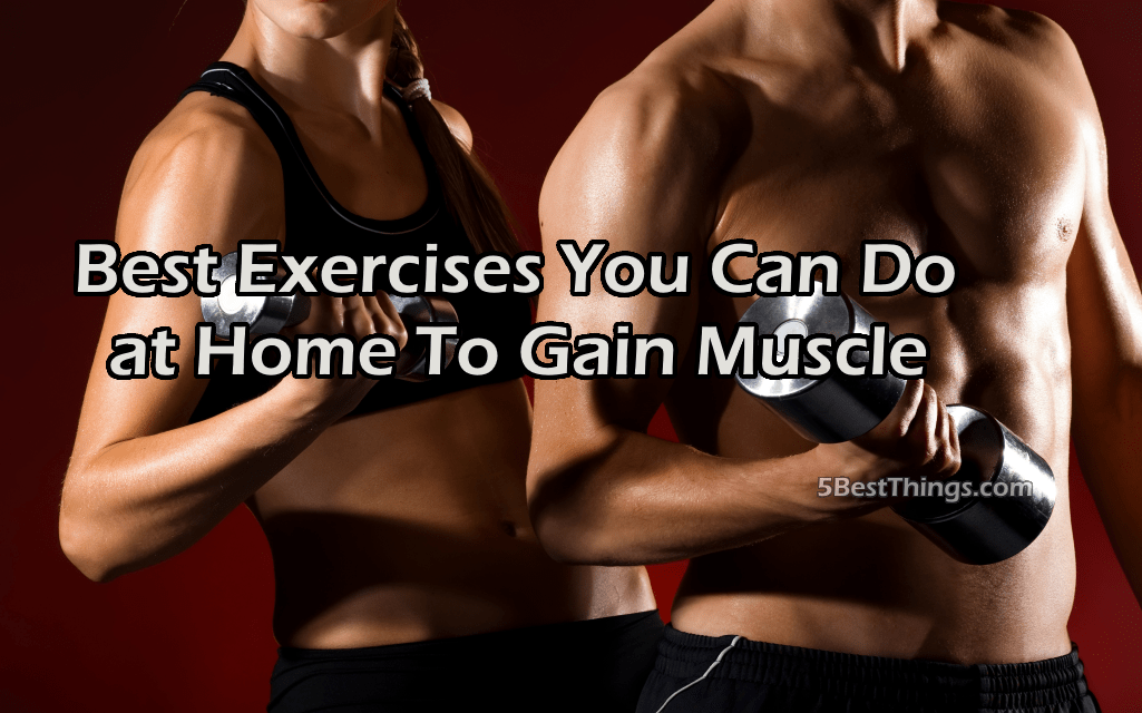 Best Exercises You Can Do at Home To Gain Muscle