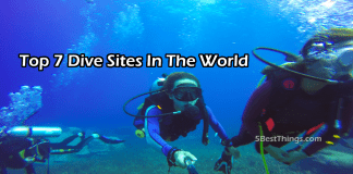 Top Dive Sites In The World