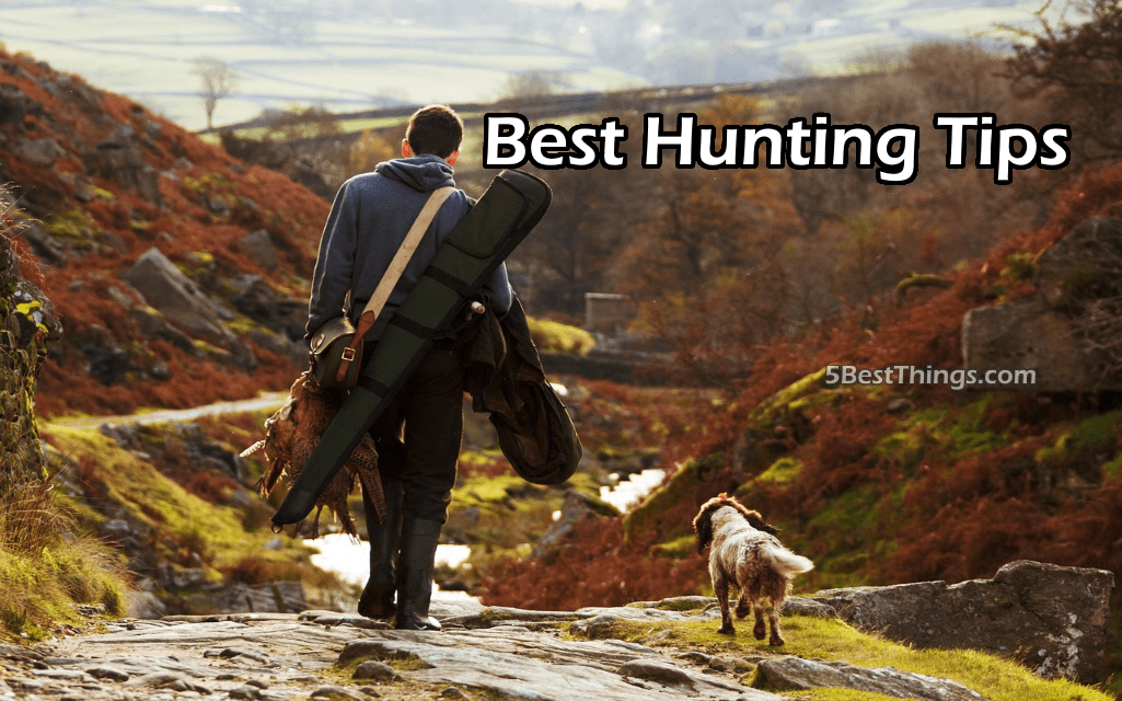 Best Hunting Tips