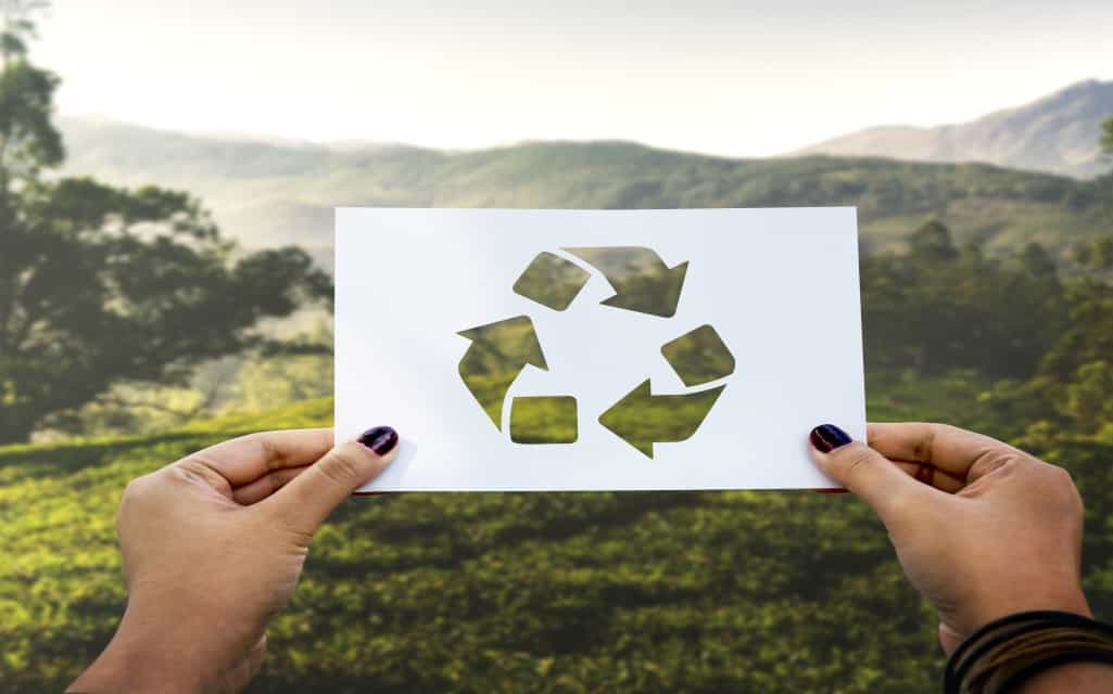 Best Ways to Reduce Your Impact on the Environment