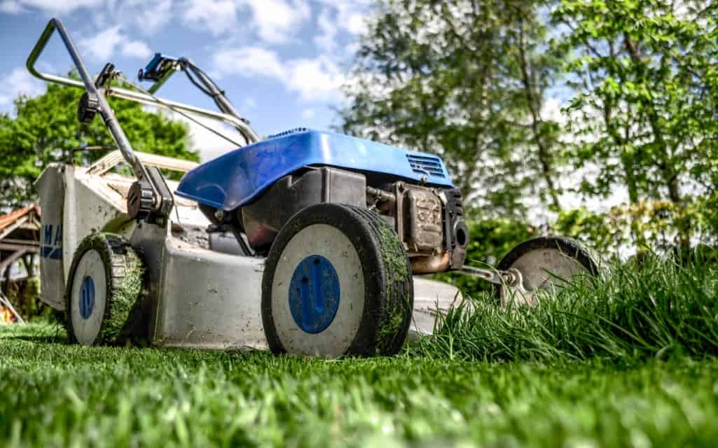 Lawn Care Companies in Chesapeake VA