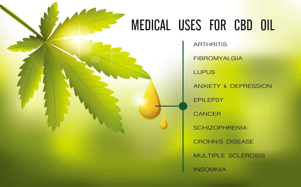 What Is CBD and It's Benefits On The Body
